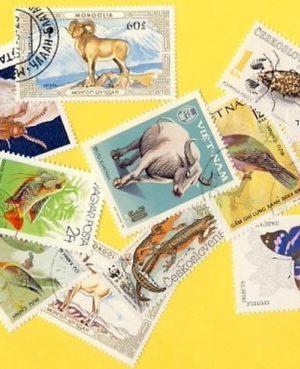 Állat (négylábú, hal, madár, stb.) – 25 klf. bélyeg