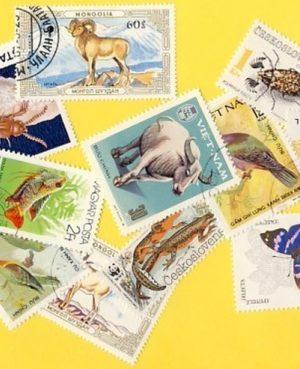 Állat (négylábú, hal, madár, stb.) – 100 klf. bélyeg
