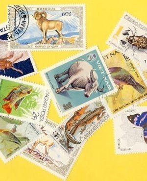 Állat (négylábú, hal, madár, stb.) – 200 klf. bélyeg