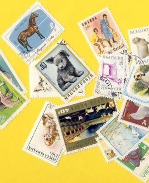 Állat (csak házi) – 25 klf. bélyeg