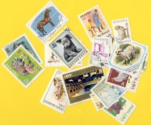 Állat (csak házi) - 25 klf. bélyeg