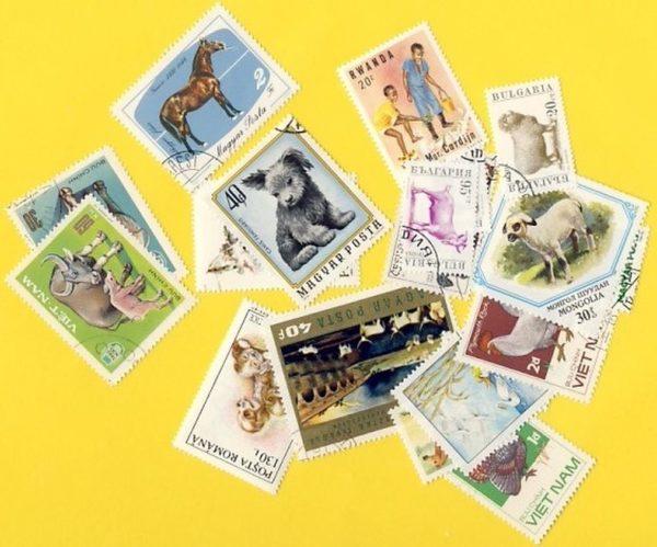 Állat (csak házi) - 100 klf. bélyeg