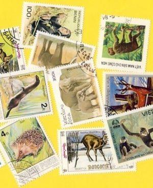 Állat (csak vad) – 50 klf. bélyeg