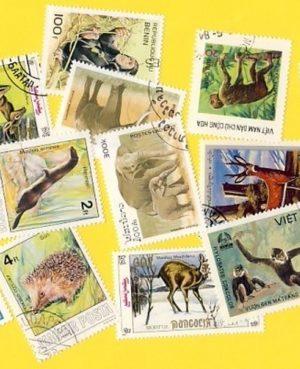 Állat (csak vad) – 100 klf. bélyeg
