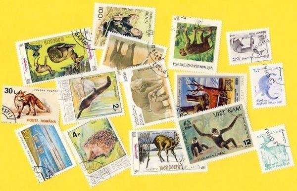 Állat (csak vad) - 100 klf. bélyeg