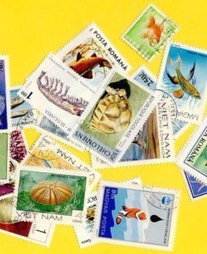 Hal és tengeri élet – 50 klf. bélyeg