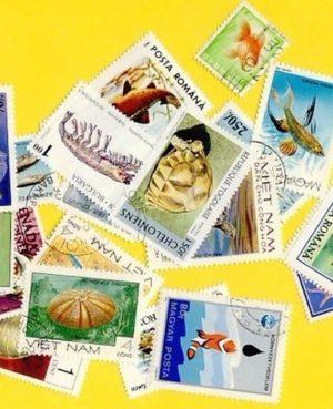 Hal és tengeri élet – 100 klf. bélyeg