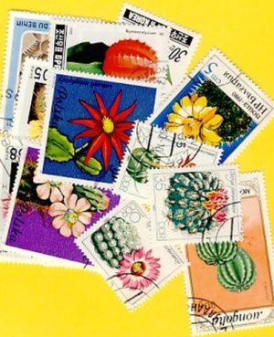 Kaktusz – 25 klf. bélyeg