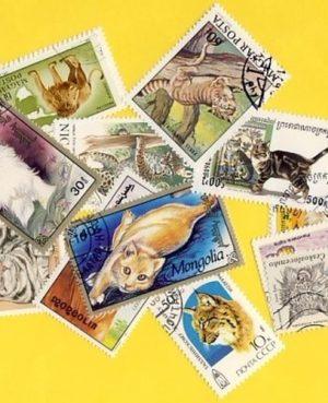 Macskaféle (házi, ragadozó) – 25 klf. bélyeg