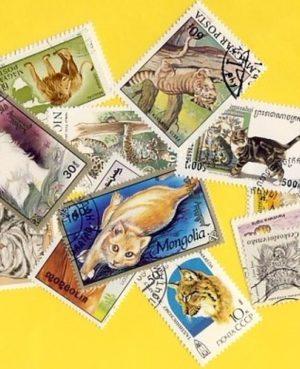 Macskaféle (házi, ragadozó) – 50 klf. bélyeg