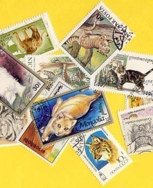 Macskaféle (házi, ragadozó) – 100 klf. bélyeg