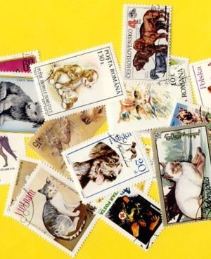 Macska és kutya – 50 klf. bélyeg