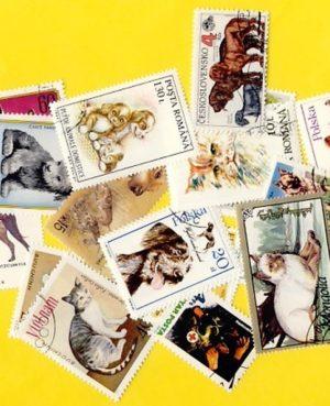 Macska és kutya -100 klf. bélyeg