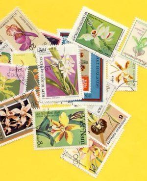 Orchidea – 100 klf. bélyeg