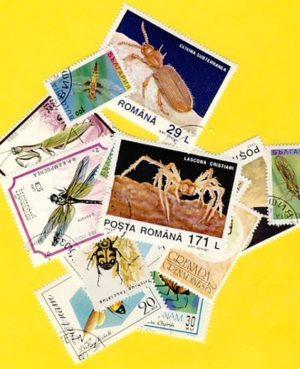 Rovar és pók – 50 klf. bélyeg