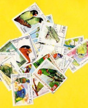Papagáj – 25 klf. bélyeg