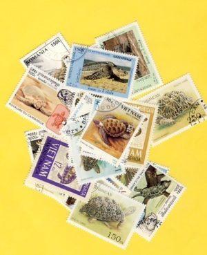 Teknős – 25 klf. bélyeg