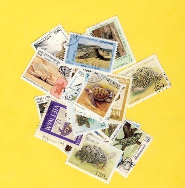 Teknős - 25 klf. bélyeg